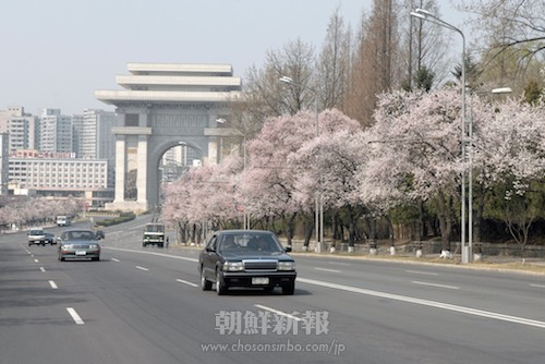 春爛漫の七星門通り(2009年4月)