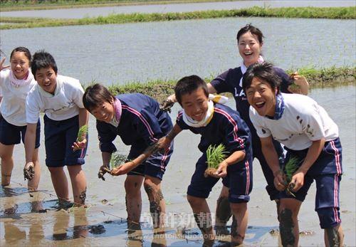 田植えを楽しむ参加者たち