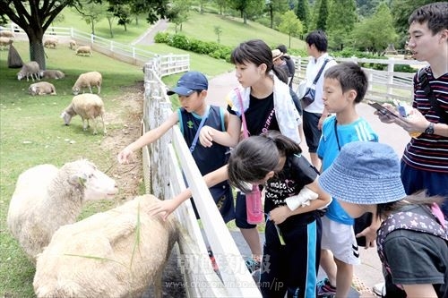 六甲山牧場で動物と触れ合う福島初中児童・生徒たち