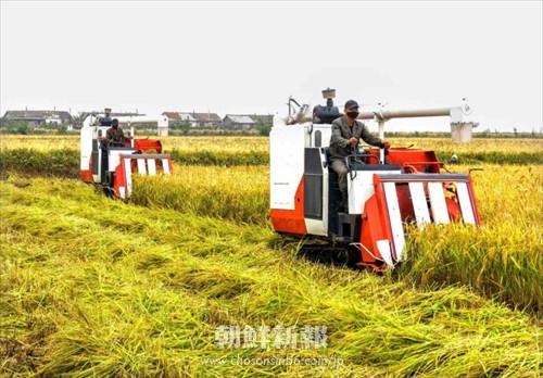 〈朝鮮経済トレンドウォッチ 1〉進化する朝鮮の農業/姜日天