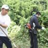 福岡初級で除草作業、アボジ会主催