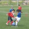 〈第5回4.24カップ〉兵庫県青商会が主催、大会とともに成長する子どもたち