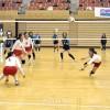 兵庫で第41回在日本朝鮮人バレーボール選手権大会