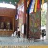 〈朝鮮仏教と私たち 53〉日本仏教化の中で抵抗