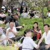 〈ピョンヤン笑顔の瞬間 3〉メーデーを祝う市民たち