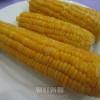 〈朝鮮紀行《食》 6〉初めての味わい、大好きに