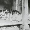 〈歴史を背負って生きる 4〉農村の就学率