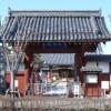 〈朝鮮通信使来聘400年 12〉江戸の通信使とオランダ人