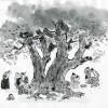 〈朝鮮の風物・その原風景 1〉タンサンナム(堂山樹)
