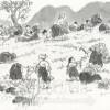 〈朝鮮の風物・その原風景 20〉サンナムル(山菜)採り