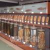 〈朝大・朝鮮自然博物館 11〉植物など・薬用植物、木材標本など多数