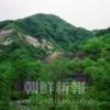 〈遺骨は叫ぶ 28〉山形・永松鉱山
