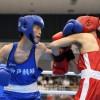 〈インターハイ・ボクシング〉神戸・裵聖和選手が初戦突破、大阪・李弘一選手は判定負け