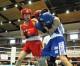 〈全国ボクシング選抜大会〉スピードで翻弄し準々決勝進出/神戸朝高、裵聖和選手