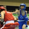 〈インターハイ・ボクシング〉判定勝ちで3回戦進出/神戸朝高・裵聖和選手