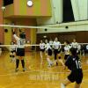 大阪男子3年ぶり、兵庫女子5年ぶりに優勝/第46回バレーボール選手権
