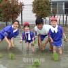 作るぞ「学校米」/長野初中で田植え体験