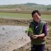〈D.P.R.K〜暮らしの今 5〉協同農場に田植えの季節