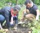 学校への理解と支援拡大に一助/埼玉の福祉農園で同胞らが収穫