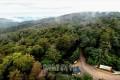 多様な生態系含む五佳山保護区/天然記念物に登録