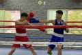 全国大会の出場権獲得/大阪朝高ボクシング部OBの同胞2選手