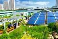 環境保全、栽培、癒し効果も/屋上緑化を採用