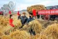 朝鮮各地で稲刈りが完了/穀物生産達成に向け全力