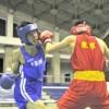 오사까조고 1학년 리건태선수가 금메달、전국고등학교권투선발대회