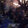 총련군마 세이모지부 태양절경축 꽃놀이모임
