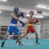 〈중앙체육대회2015・권투〉오사까가 단체우승, 10여년만에 녀자경기도