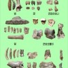평안남도 순천시 동암동에서 발굴된 구석기시대전기유적