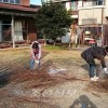 동포, 학생 위한 봉사대활동/조청이바라기