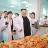 김정은원수님, 조선김치공장의 본보기, 표준으로 전변된 류경김치공장을 현지지도