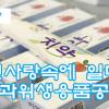 【동영상】인민사랑속에 일떠선 치과위생용품공장