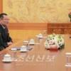 조선민주주의인민공화국 고위급대표단이 청와대에서 남조선대통령을 만났다