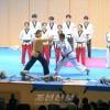 〈평창올림픽〉 북남태권도인들의 합동시범출연 진행
