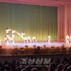 북남태권도시범단이 합동시범출연/평양대극장에서