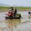 과학기술을 앞세워 알곡생산목표 돌파를/협동벌들에서 벼모내기 한창