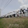 《평화여 오라, 통일이여 오라》/판문점선언 1돐, 남측에서 다양한 행사