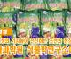 【동영상】〈자력갱생의 기치높이 전진하는 조선의 현장들 3〉국가과학원 식물학연구소에서