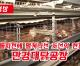 【동영상】〈정면돌파전에 떨쳐나선 조선의 현장 9〉만경대닭공장