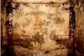 황해남도일대에서 첫 사신도주제의 고구려벽화무덤/발굴된 5기중 벽화무덤은 2기