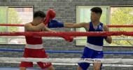 《전국》대회 출전권을 획득/大阪조고출신 동포권투선수 2명이
