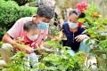 전국에 소문난 《꽃집》의 류다른 정서/수림과 같은 정원, 각종 나무분재가 인기