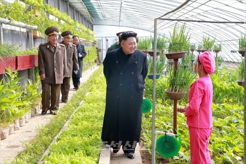 김정은원수님께서 오중흡7련대칭호를 수여받은 조선인민군 항공 및 반항공군 제1016군부대를 시찰하시였다.(조선중앙통신)